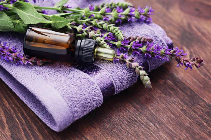 Для чего применяется эфирное масло? Лаванда: свойства и применение масла в косметологии