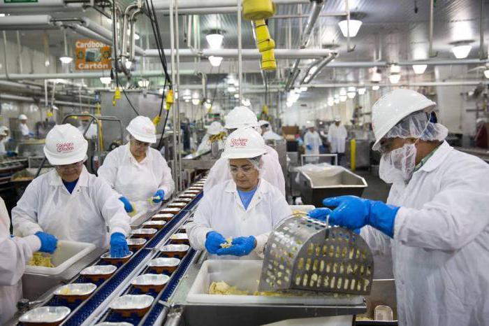 должностная инструкция начальника пищевого производства