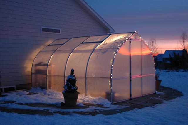 поликарбонатная теплица зимой