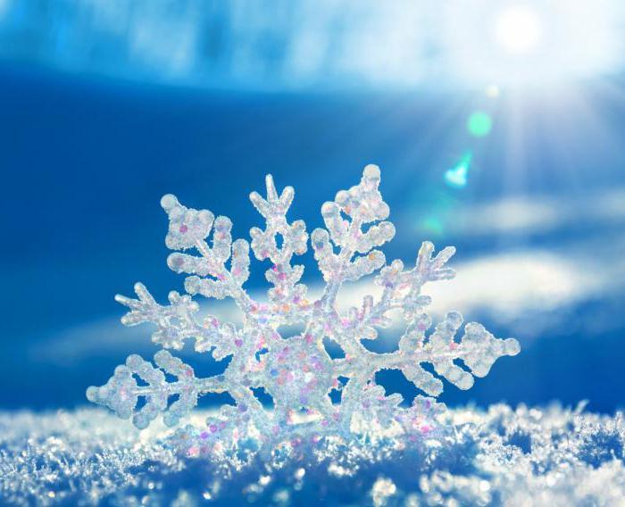 картинки природа зима