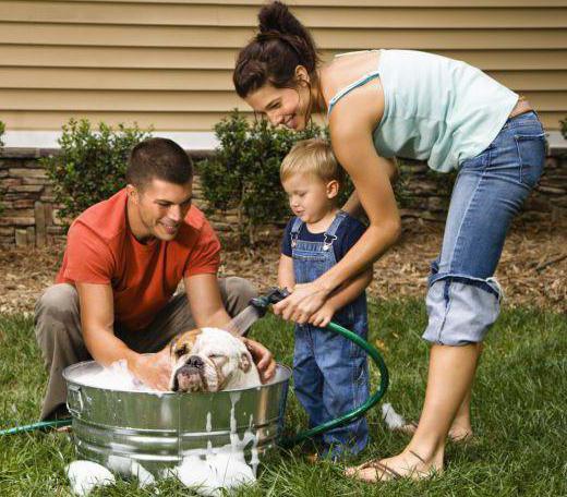 трудовые традиции семьи сочинение по обществознанию
