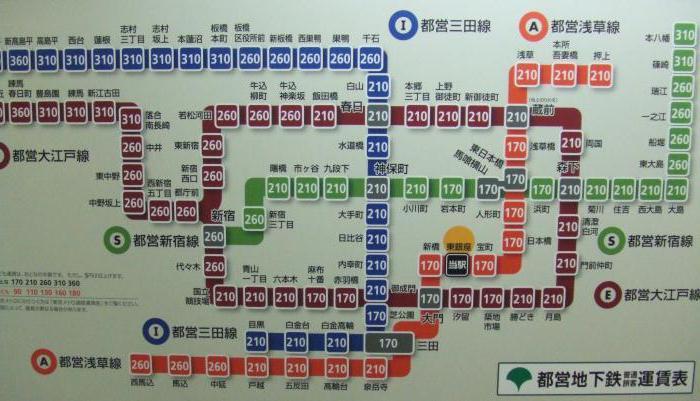 Количество станций токийского метро