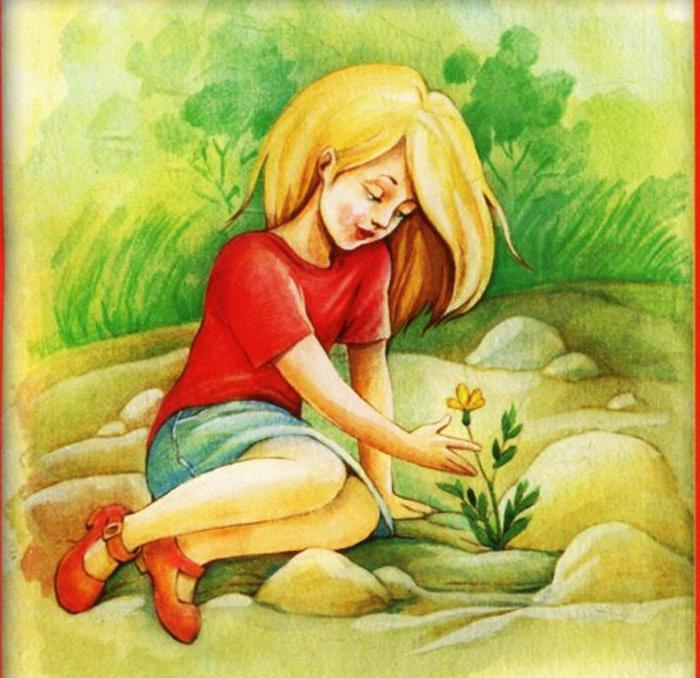 Картинки платонова неизвестный цветок