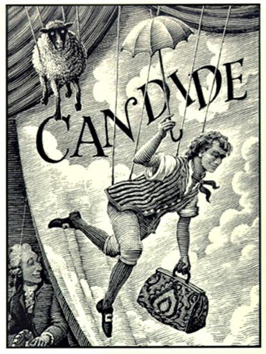 a literary analysis of the characters in candide by voltaire Find all available study guides and summaries for candide by voltaire if quotes, and analysis of themes, characters offers literary.