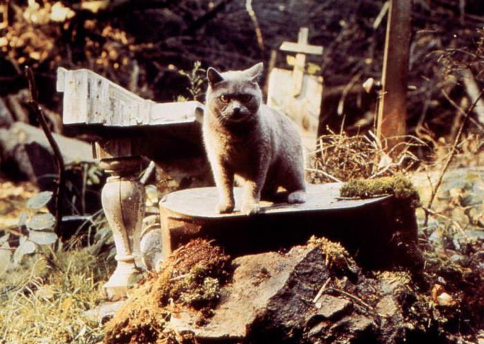 актеры фильма кладбище домашних животных