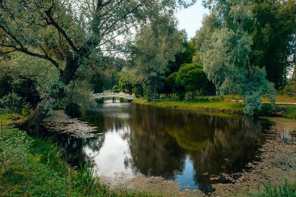 путешествие по пушкинским местам