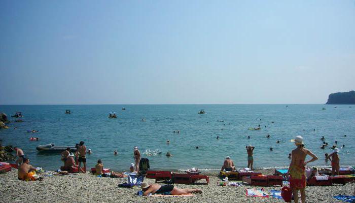 новомихайловский платный пляж
