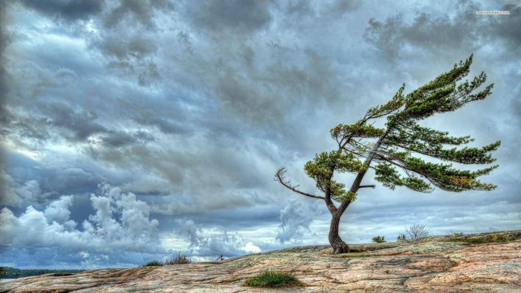 сильный поток ветра
