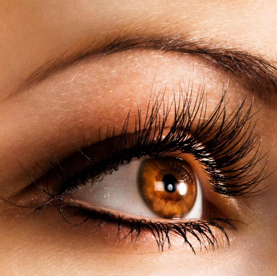 реснички глаза фото объединяет близость мест