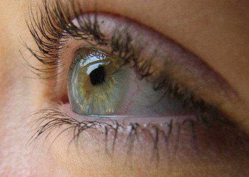 Как сделать чтобы глаза не опухали по утрам 347