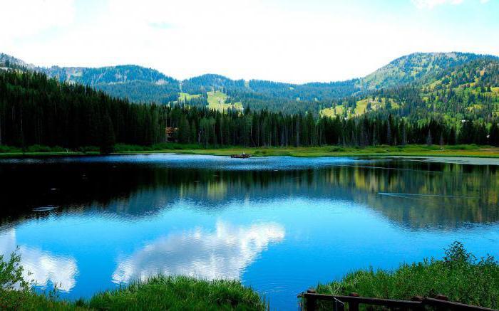 васюткино озеро тайга