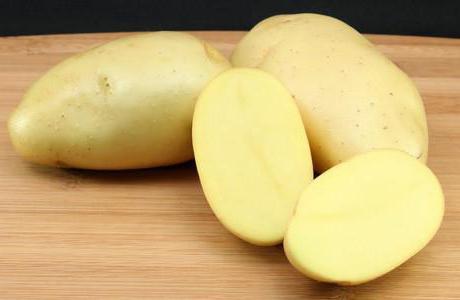 лучшие сорта картофеля описание рекомендации