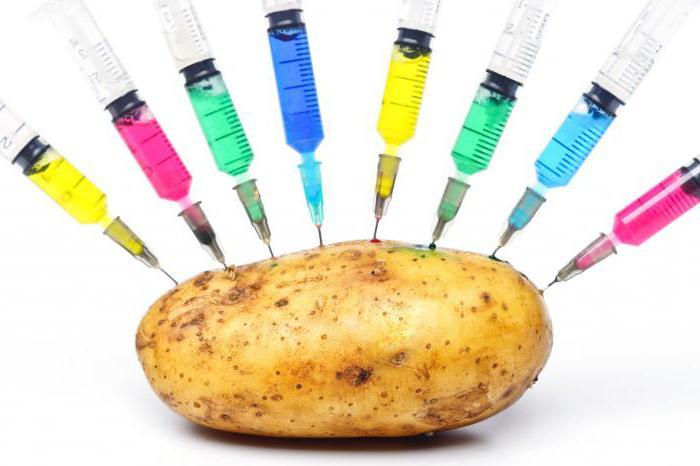 """Résultat de recherche d'images pour """"ГМО-картофель"""""""