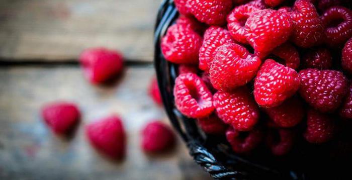 Как получить семена малины из ягод? Размножение малины семенами