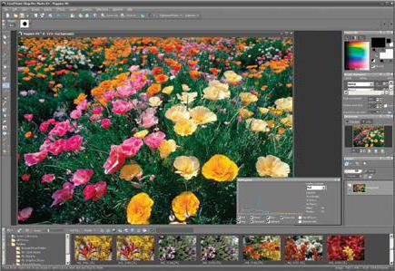 Corel Photo Paint: достоинства и недостатки популярного фоторедактора