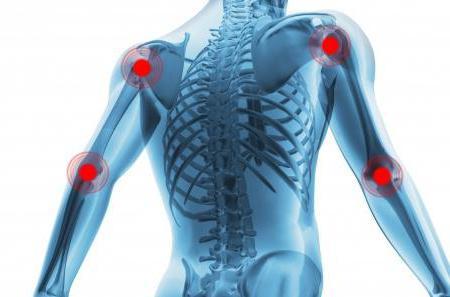 анатомия человека плечевая кость