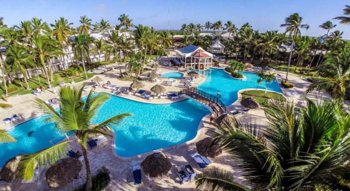 be live collection punta cana 5