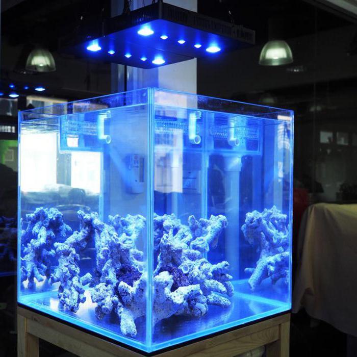 освещение аквариума светодиодными прожекторами