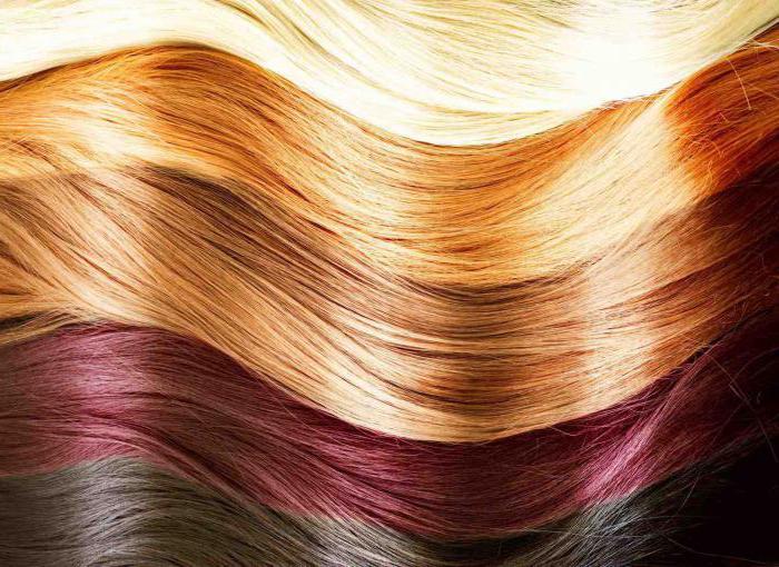 Колористика для парикмахеров: теория. Парикмахерское искусство