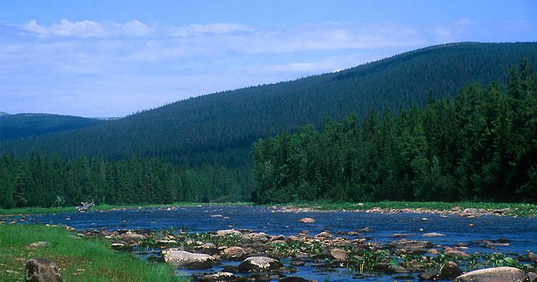 река Печора