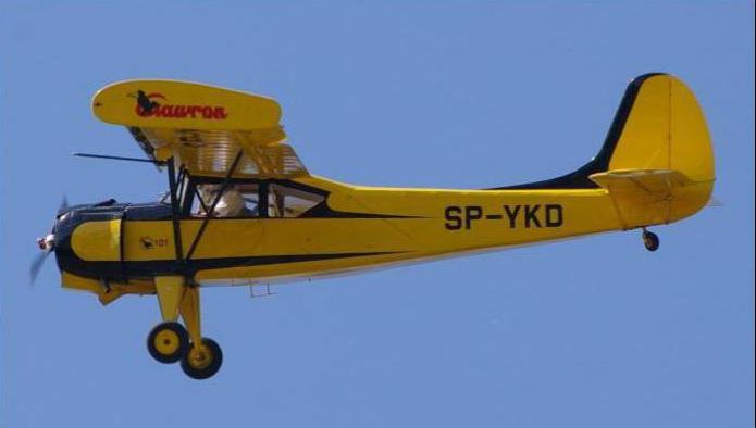 як 12 радиоуправляемая модель самолета полет