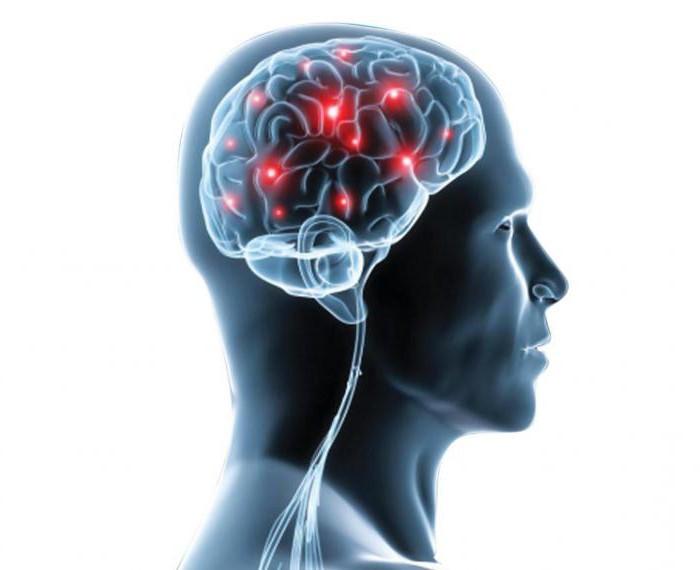 лучшие неврологи москвы