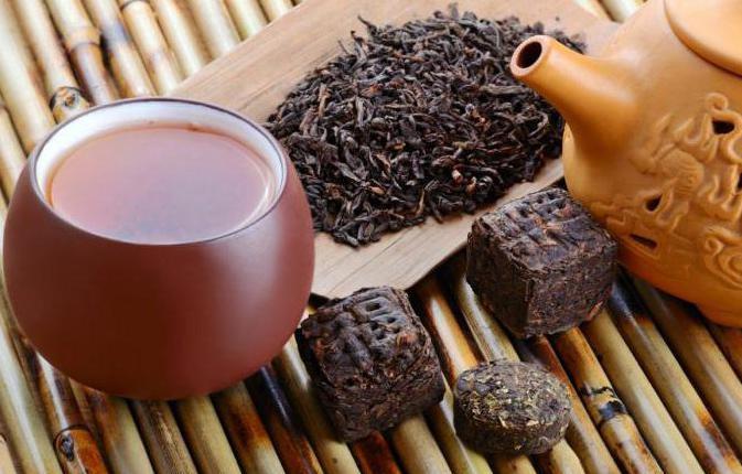 что полезнее утром чай или кофе