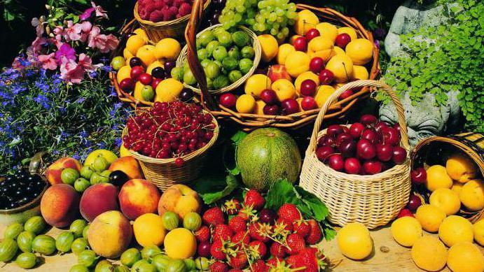 Плод сои