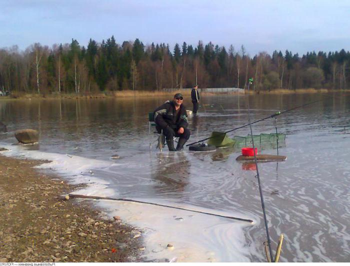 рыболовные места в тверской области на волге