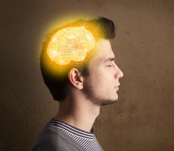проблема решения системным мышлением