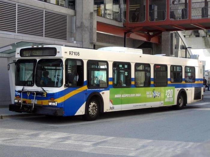 путевой лист автобуса