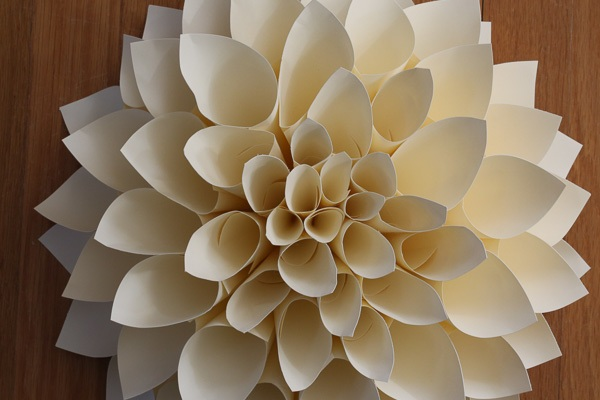 """dahlia from paper """"horns"""""""