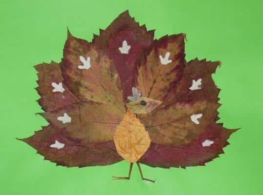 Павлин из листьев - поделка в детский сад