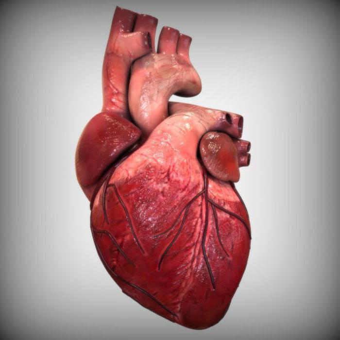 врожденные пороки сердца аортального клапана