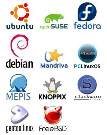 Дистрибутив: что это? Примеры дистрибутивов ОС и программ