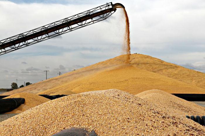 Элеватор зерна что это такое транспортер в строительстве это
