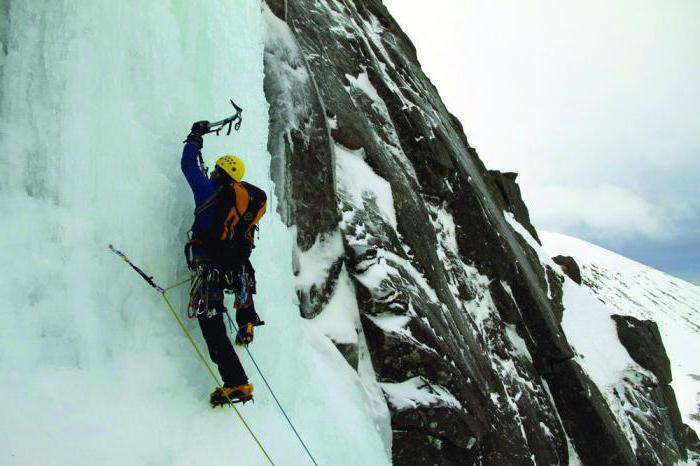 essay mountaineering Business analysis management - cima mountaineering, inc case study.