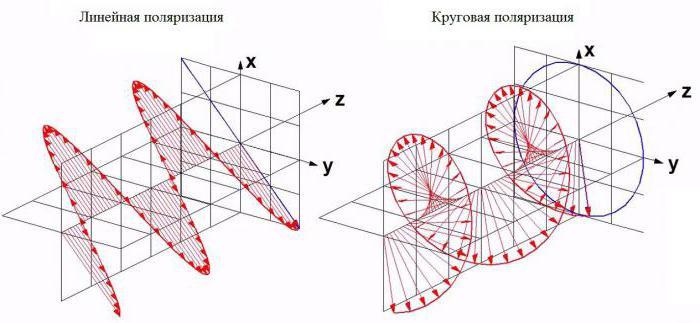 этого линейная поляризация картинки письмах борис