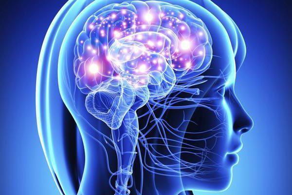 симпатический и парасимпатический отделы нервной системы оказывают