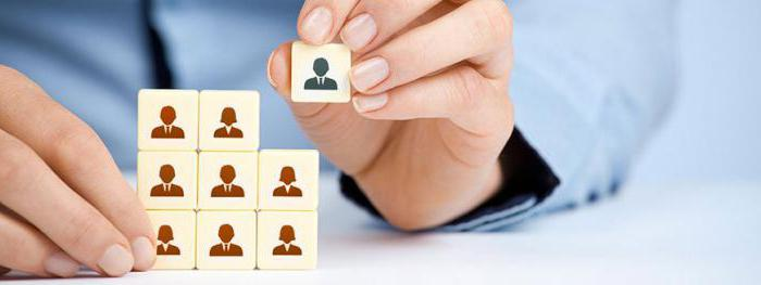 организационно штатная структура организации