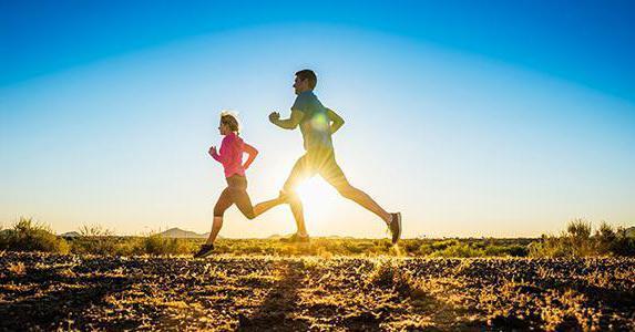 energy diet smart отзывы врачей