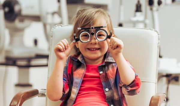 анатомия глаза офтальмология