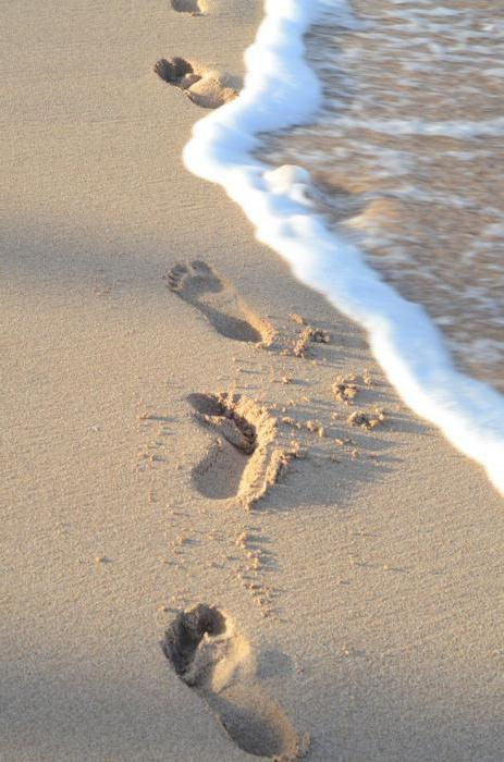 Неповторимые образы и шикарные идеи фотосессии на море