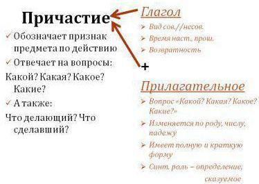 Аксенова л. | обособленные обстоятельства, выраженные.