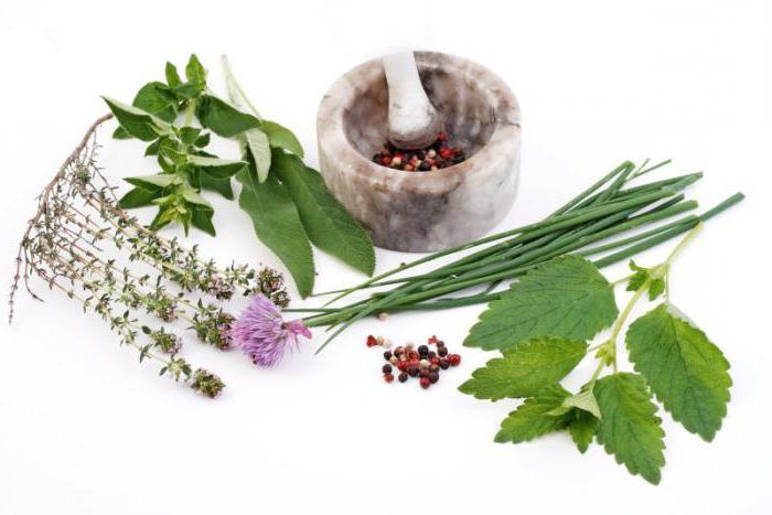 Какие травы можно пить при климаксе фиточай сборы рецепты