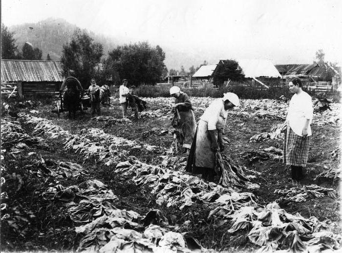 многоукладная экономика россии в начале 20 века