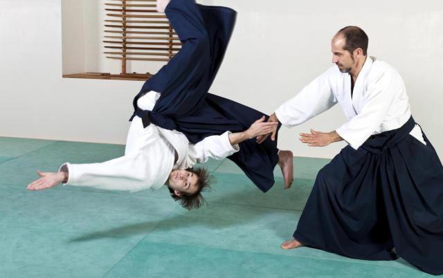 виды японской борьбы