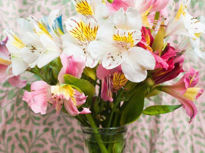 Сонник дарят цветы