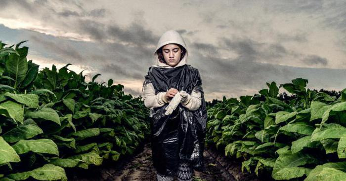 эксплуатация детского труда статья рф