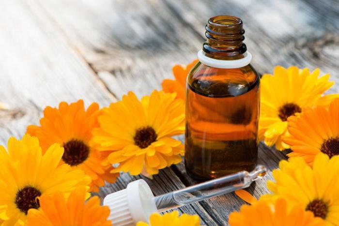 календула лечебные свойства и противопоказания для детей